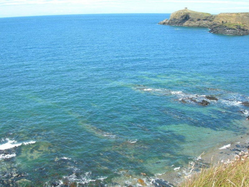 Abereiddy - clean beach award